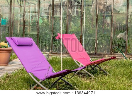 sun lounger green garden texture for rest