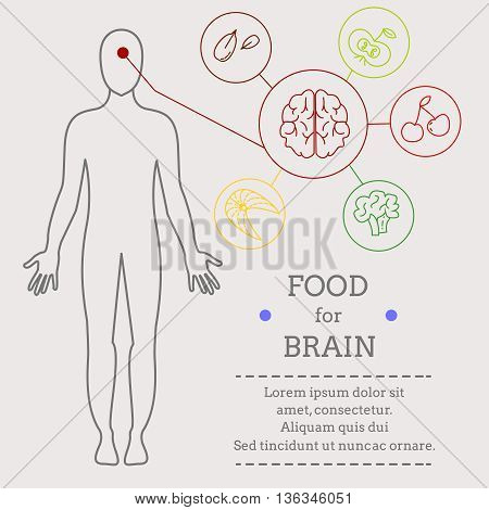 Food for brains. Food for bone. Healthy food with organic food infographic. Food trend health care concept. Medical info. Instructions for each