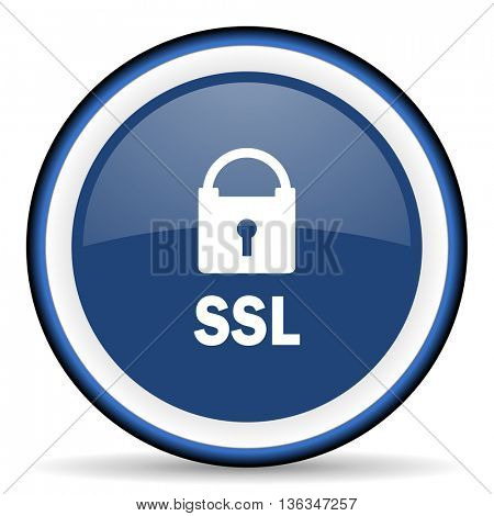 ssl round glossy icon, modern design web element