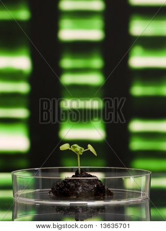 Biotechnologie Research
