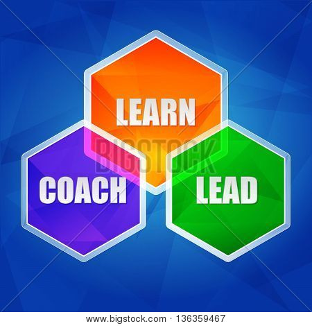 learn, coach, lead - business education concept words in color hexagons over blue background, flat design, vector
