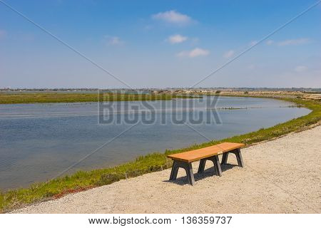 Park Bench On Trail