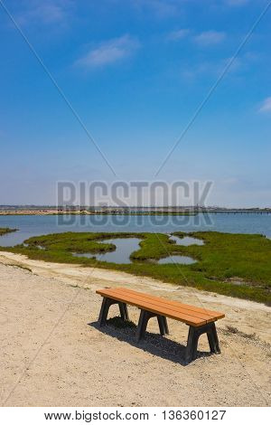 Park Bench In Nature Reserve