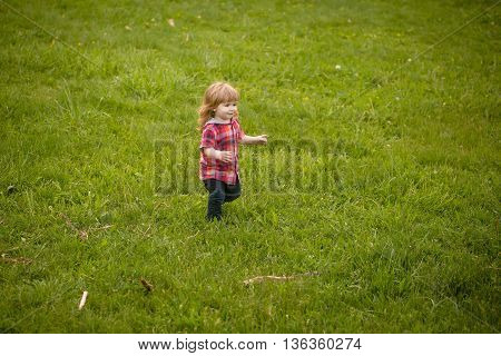 small boy child with long blonde hair in checkered shirt playing standing on green grass field outdoor on natural background copy space