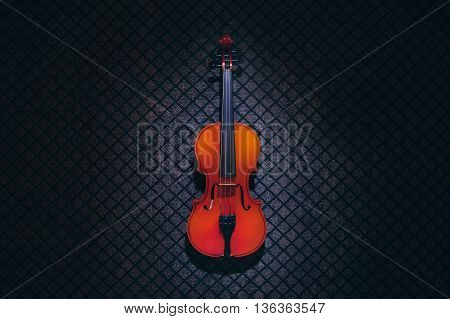 Violin in darkness on the carpet wall