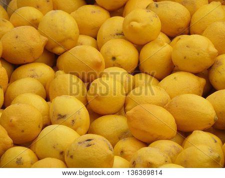 Lemon fresh citrus fruit at a farm stand.
