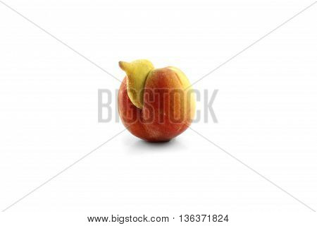 rare and deformed peach isolated white background