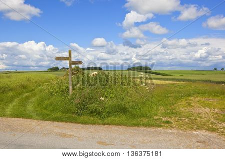 Wooden Footpath Sign
