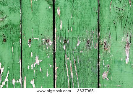 Picture of a Green old painted cracked wooden door texture as background.