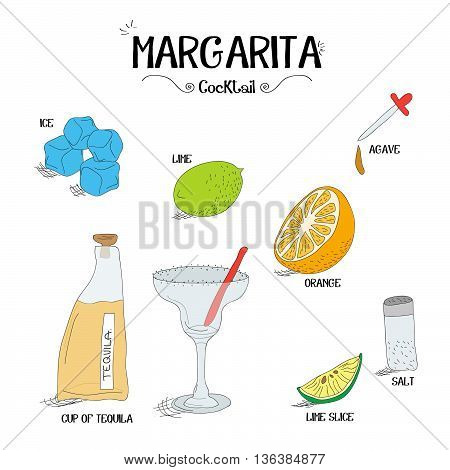 how to make a Margarita cocktail set with ingredients for restaurants and bar business vector illustration