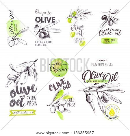Set of hand drawn watercolor labels and signs of olive oil. Vector illustrations for olive oil labels, packaging design, natural products, restaurant