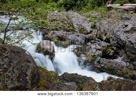 Sol Duc river cascades in the Olympic national forest in Washington.
