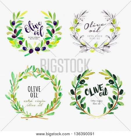 Hand drawn watercolor elements of olive oil. Set of vector illustrations for olive oil labels, packaging design, natural products, restaurant and menu.
