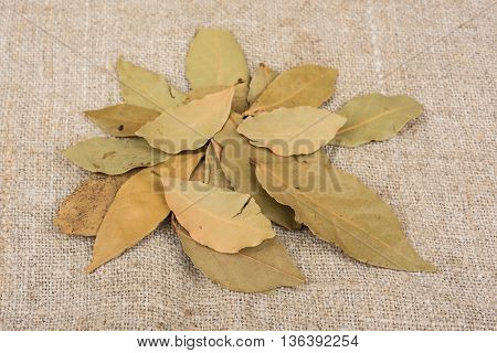 Dry bay leaves on sack cloth closeup