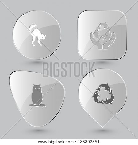 4 images: cat, protection sea life, owl, killer whale as recycling symbol. Animal set. Glass buttons on gray background. Vector icons.