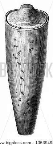 Earthenware pot containing the mummy, vintage engraved illustration. Magasin Pittoresque 1852.