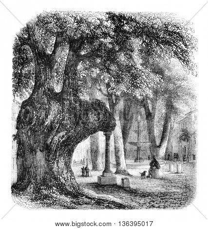 The Orme Square Caramy, Brignoles has, vintage engraved illustration. Magasin Pittoresque 1852.