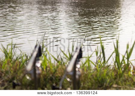 Carp fishing rods Selective focus and shallow Depth of field