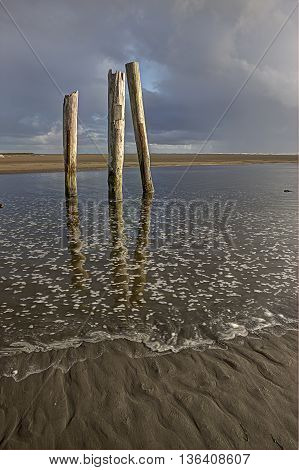 Posts in the water near the Pacific Ocean in Pacific Beach Washington.
