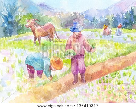 People planting rice in a paddy field. Watercolor painting hand-drawn illustration. Asia Thailand.