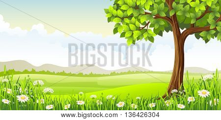 Summer panorama landscape with tree and flowers