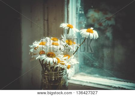 daisies in a glass jar vase on the table near the window