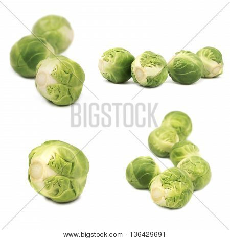 Set of brussels sprouts isolated on white background
