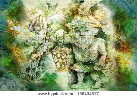 drawing of garden dwarf with lantern and healing herbs.