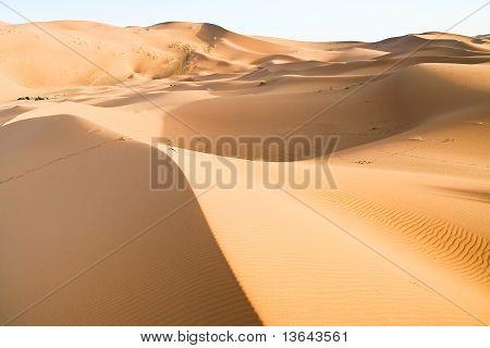 Moroccan Desert Dune Background