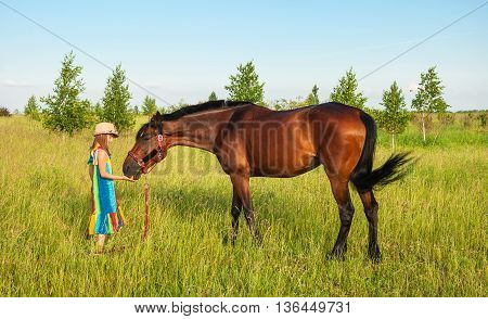Little girl in bright hat and sundress feeding a horse on the lawn
