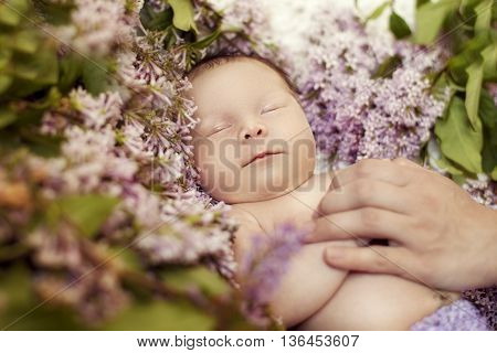 Newborn girl sleeping in the colors of lilac but the hand of the mother caresses her and soothes