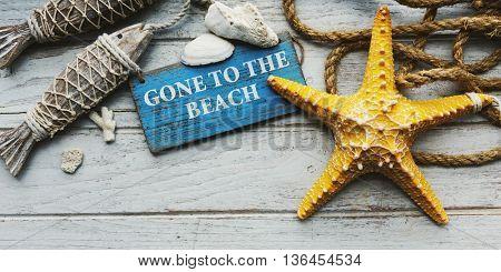 Adventure Travel Trip Vacation Summer Shells Concept