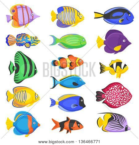 Exotic tropical fish set in different shapes and colors flat isolated vector illustration