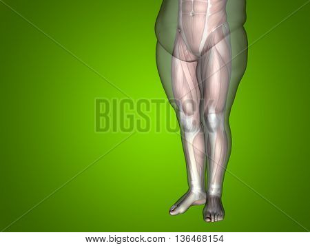 Concept or conceptual 3D fat overweight vs slim fit diet with muscles young man isolated on green background metaphor weight loss, body, fitness, fatness, obesity, health, healthy, male dieting, shape