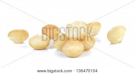 Macadamia isolated on white background.Focus macadamia front.