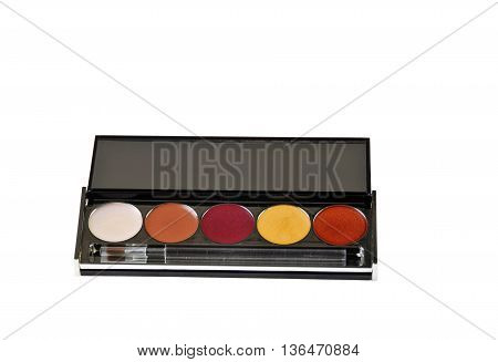 Lip Gloss Palette closeup isolated on white background.