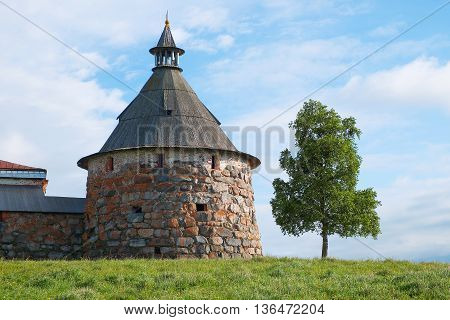 Old fortress tower and a tree against a blue sky. Architecture exterior