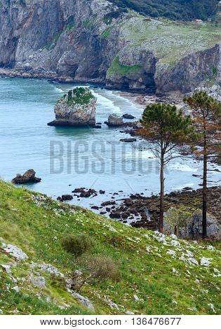 Ocean Coast Spring View