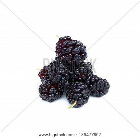 sweet and juicy ripe mulberry on a white background photo for micro-stock