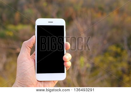 Hand holding white smartphone with tree background