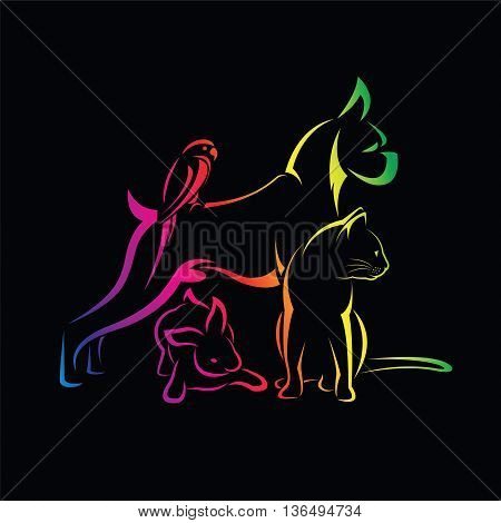 Vector group of pets - Dog cat bird rabbit isolated on black background