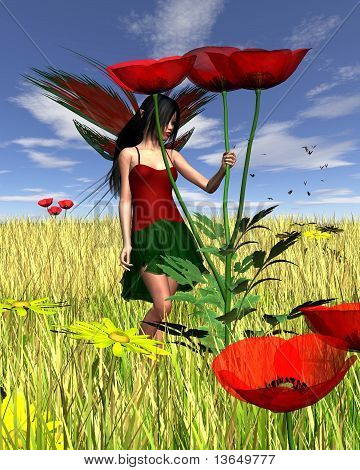 Red Poppy Fairy