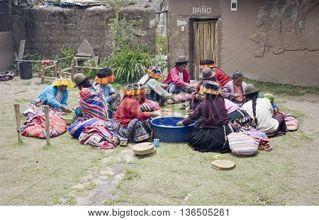October 22 2012 - Paru Paru Peru: Indigenous women cutting potatoes for a local wedding ceremony Paru Paru the highest-altitude community in La Parque de la Papa Andes Mountains.