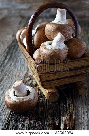 Lot of Fresh mushroom champignon in a basket