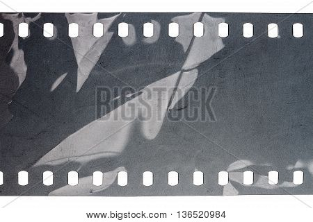 Blank crumpled noisy gray filmstrip isolated on white background