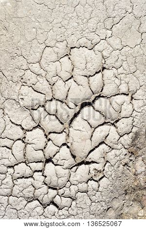 Dry Mud Cracked Riverbed