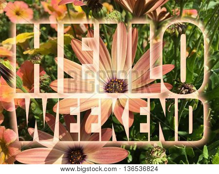 Hello Weekend word on nature flowers background