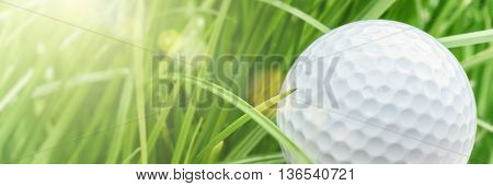 Golf ball over green grass background closeup. Sport and leisure concept with copy space