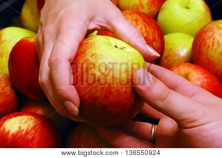 Man's Hand Gives an Apple To Woman's over Heap of Apples Background