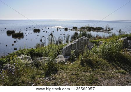 A view of Mackinac Island's shoreline with plants and large rocks.